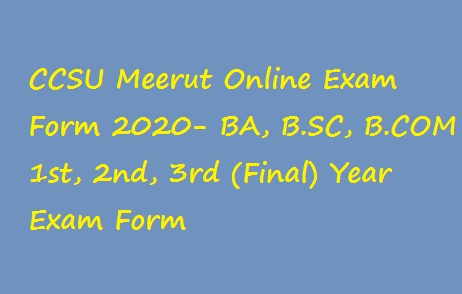 CCSU Online Exam Form 2020