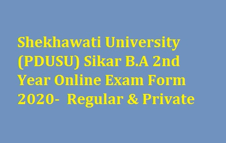 Shekhawati University BA 2nd Year Online Exam Form 2020